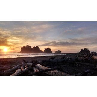 Western Washington Coast