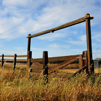 Fences in Field