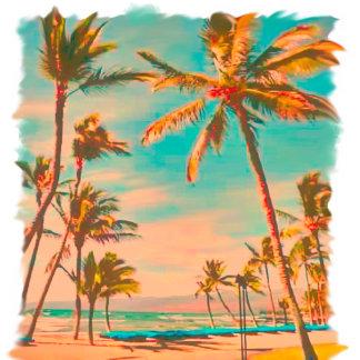 1.1  Hawaii
