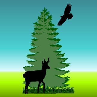 NATURE / WILDLIFE