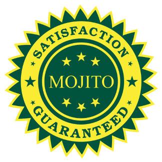 Mojito Satisfaction Guaranteed