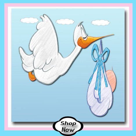 Baby Boy - Stork Baby Gifts