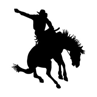 Bull and Bronc Riding