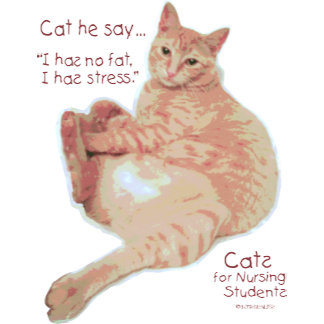 Cats for Nursing Students - I has Stress