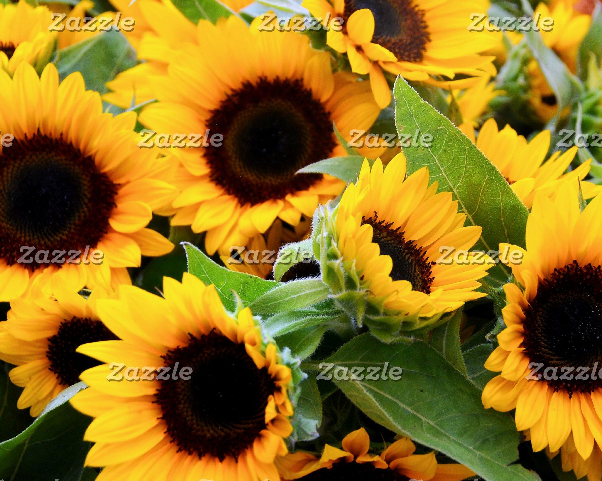Flower Power