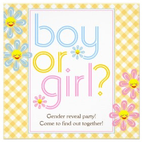 Gender reveal party text design