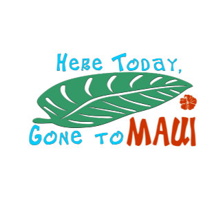 Here Today Gone To Maui