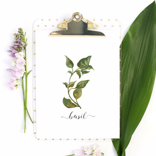 Botanical Home Decor Prints