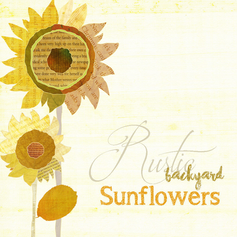 ♥ Rustic Backyard Sunflowers