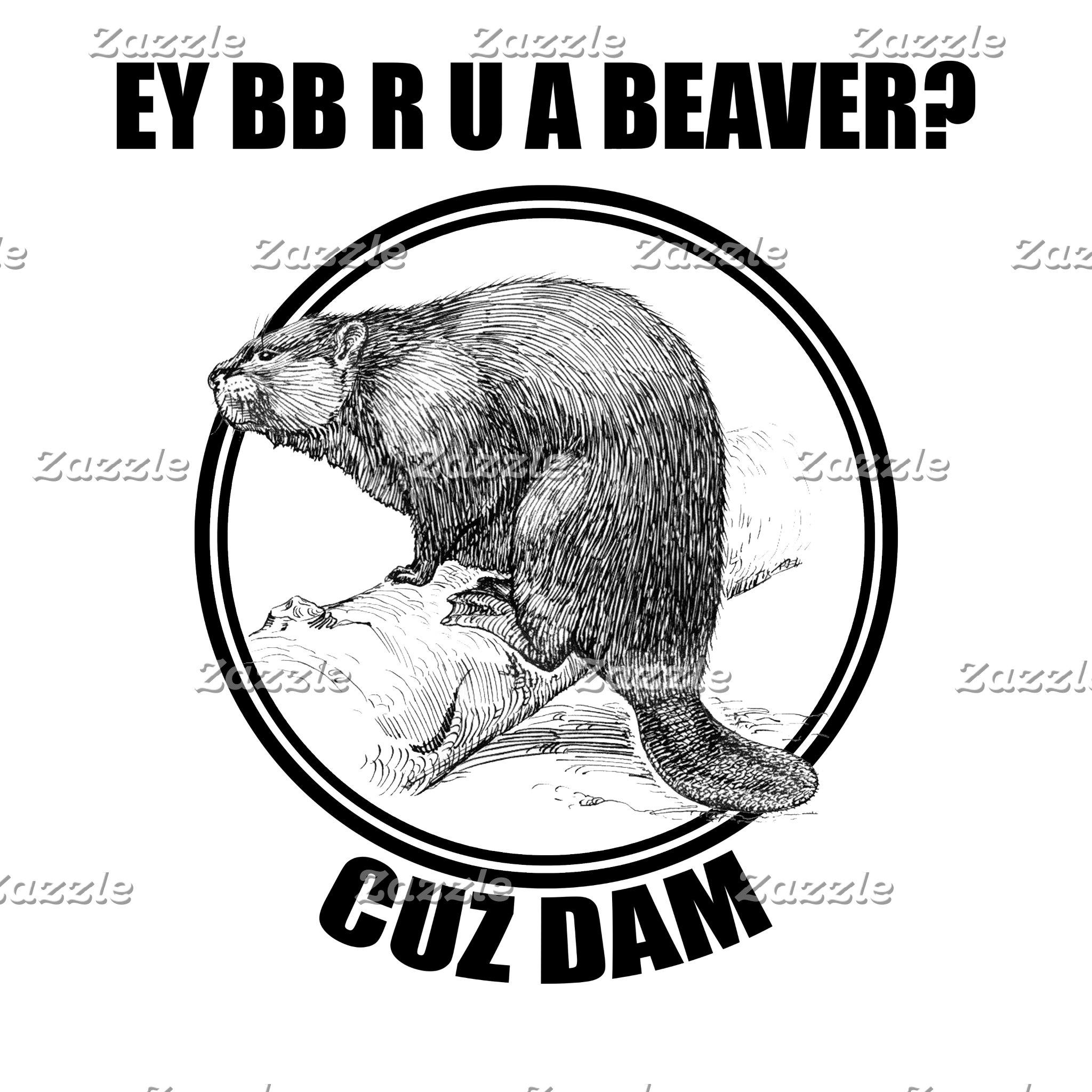 Cuz Dam