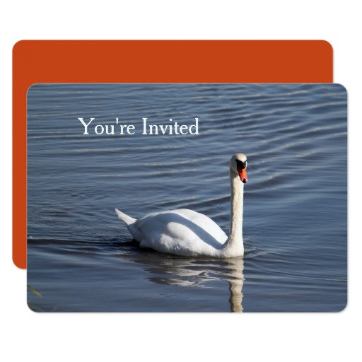 Invitations, Postage, Labels