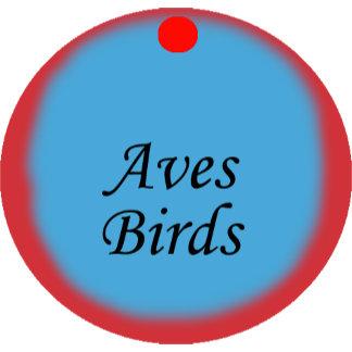 Aves Birds