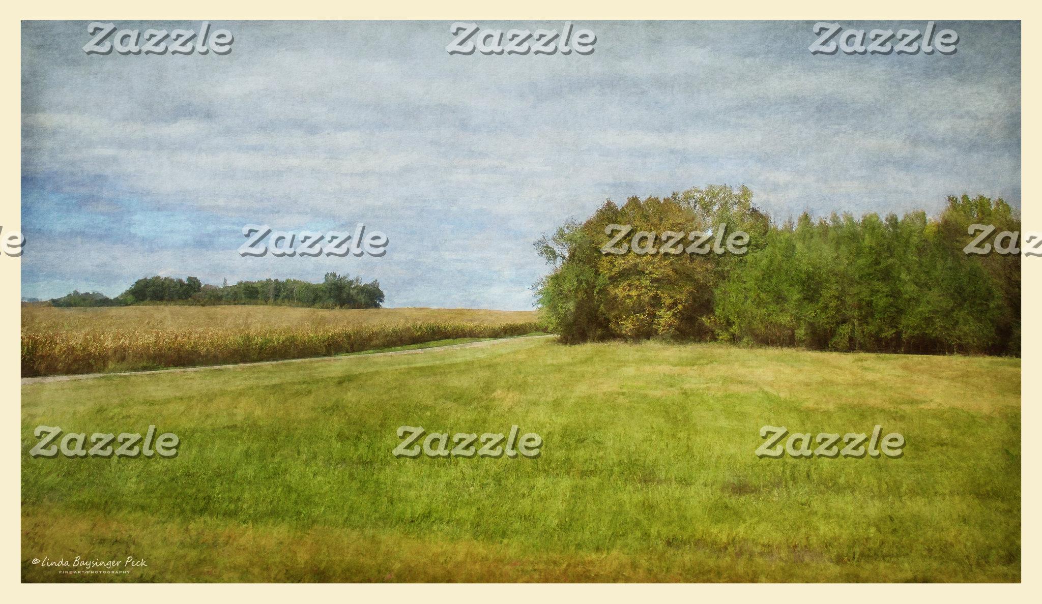 Winding Road Through Cornfields