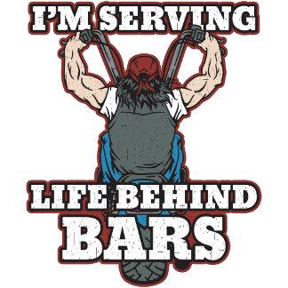 I'm Serving Life Behind Bars - Male