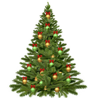 My Custom Christmas Tree Skirt