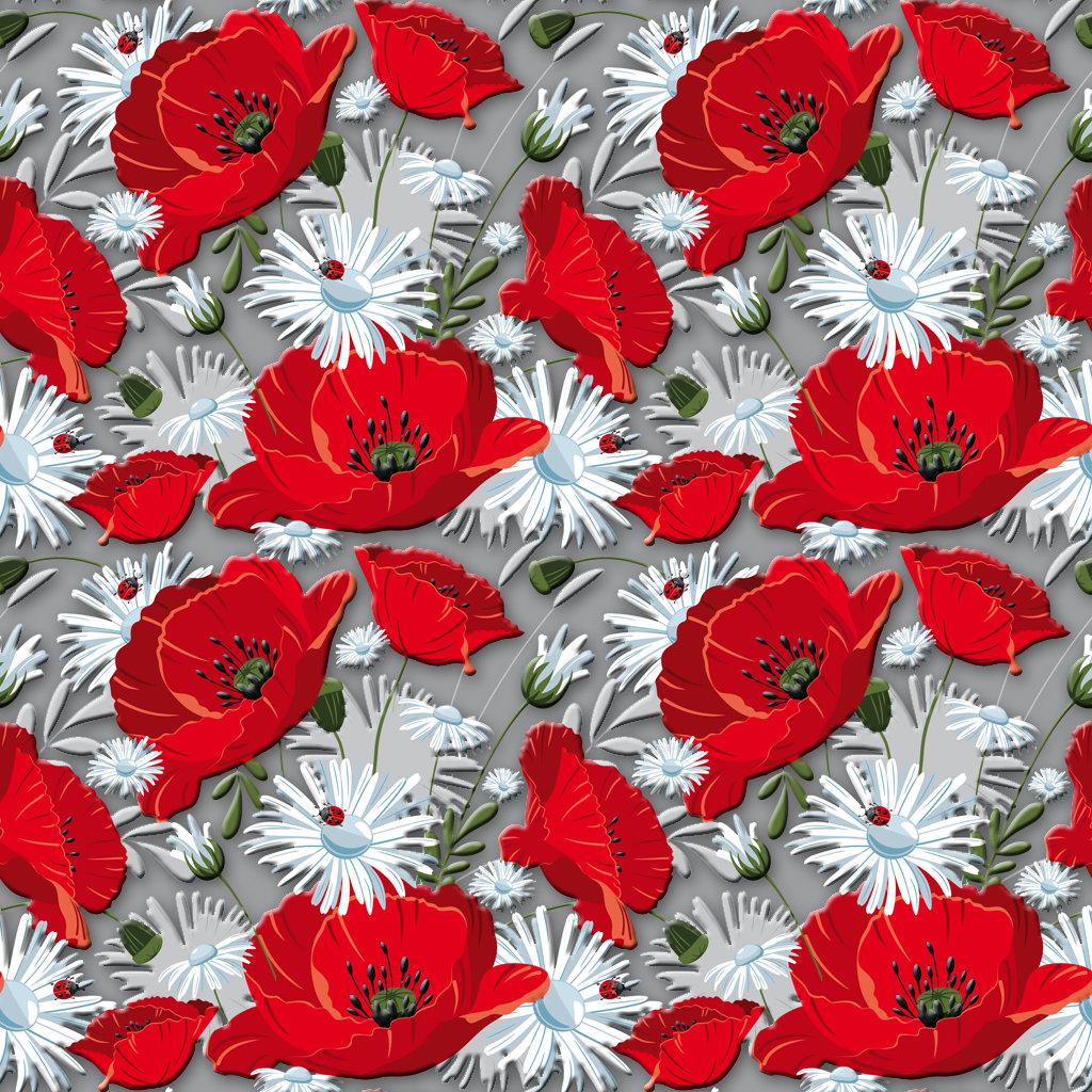 Gorgeous poppies