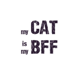 Cat Lover Designs