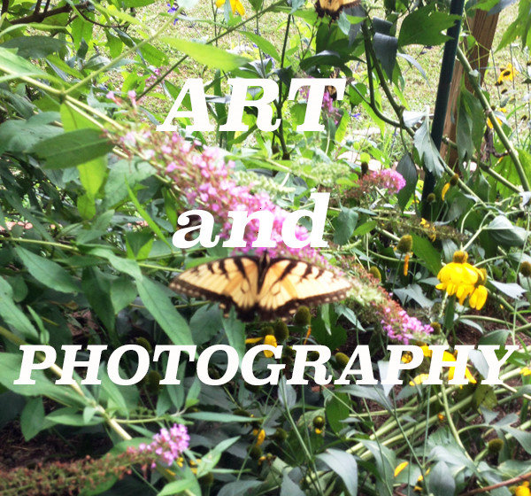 Art and Photography