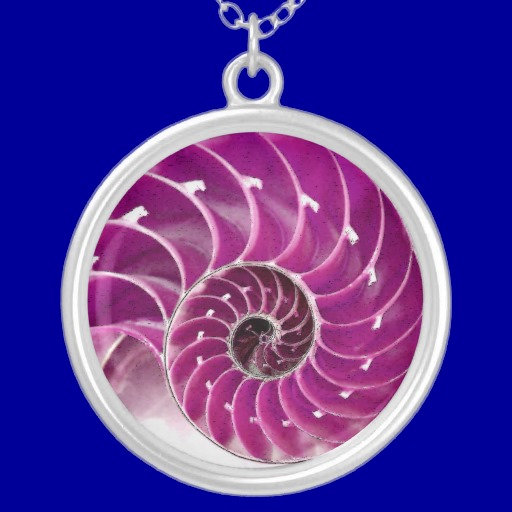 06. Nautilus Shell Design