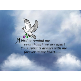 Bird Memorial Poem