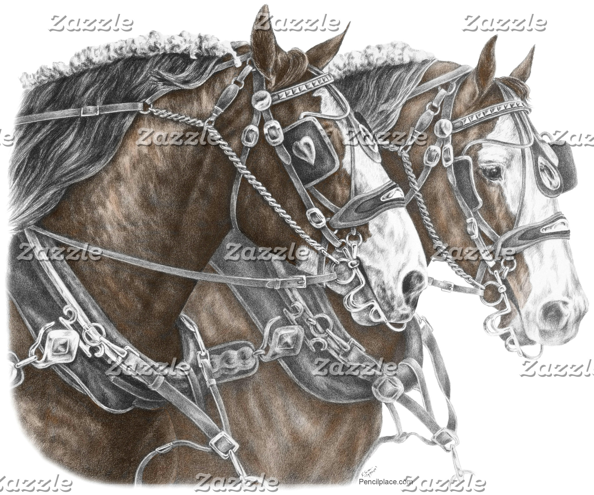 Clydesdale Draft Horse Art