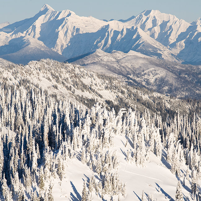 A Scenic View of Snowy Mountains and Trees.