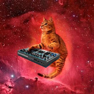 cat sounds - cat - funny cats - cat memes