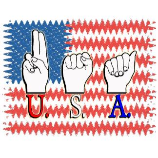 USA DEAF PATRIOTIC FLAG