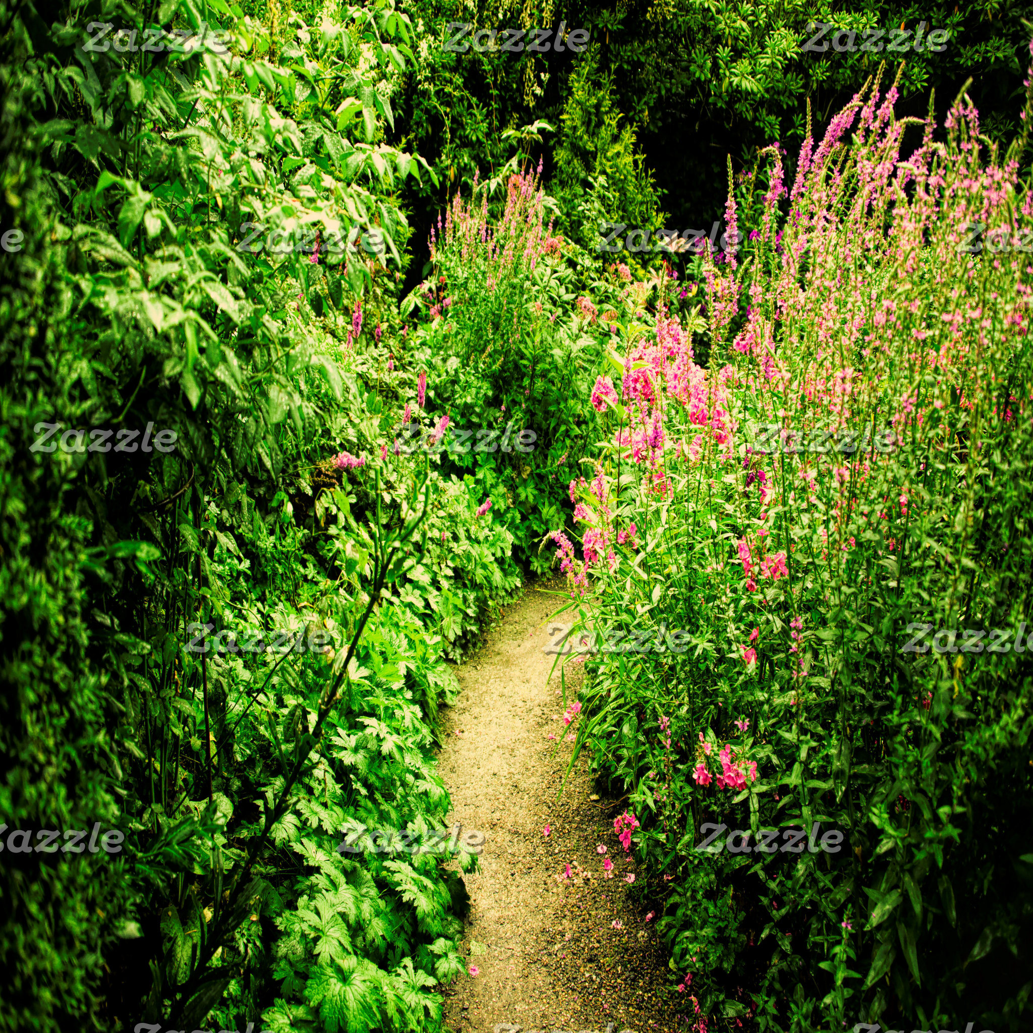 Garden, environment and flowers