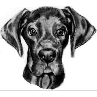 Dogs - Great Dane