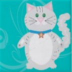 Kitty Kraze