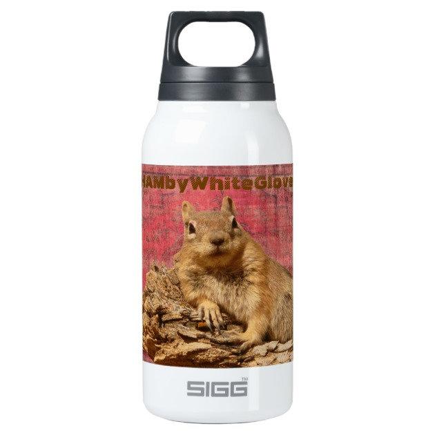 10.)  HAMbWG - Thermos' & Water Bottles, Mugs