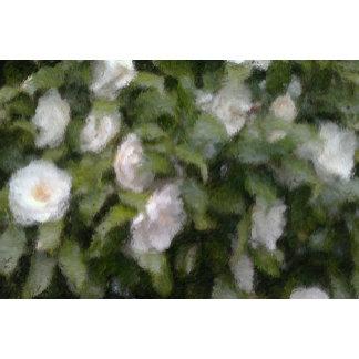 Camellia Design-White