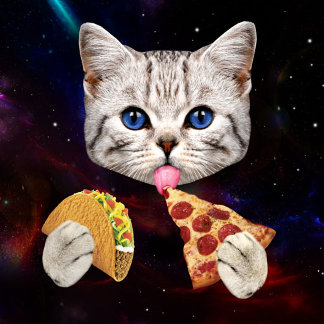 Space Cat with taco and pizza