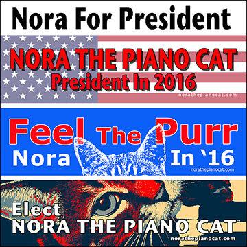 Nora For President