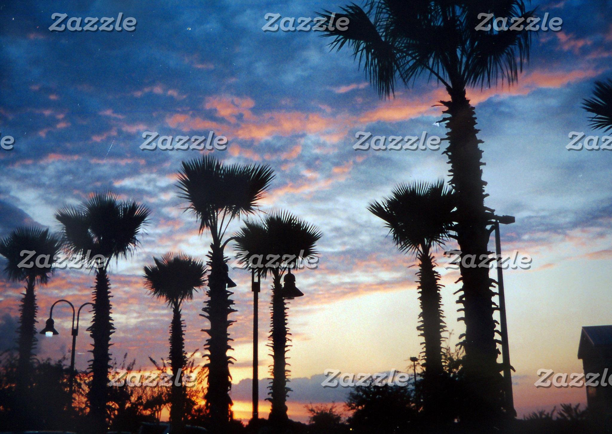 Florida Scenery