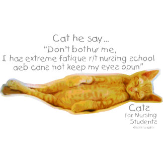 Cats for Nursing Students - Fatigue