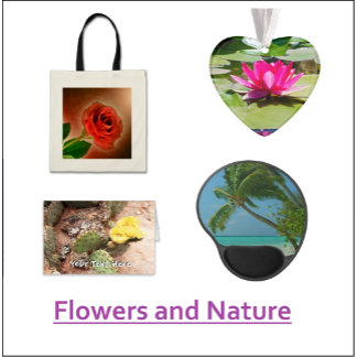 Flowers and Nature