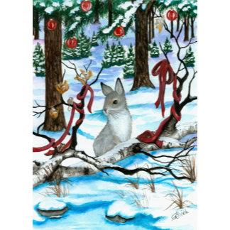 Winter & Wildlife Wonders