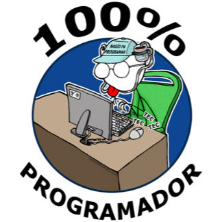 100% Programador