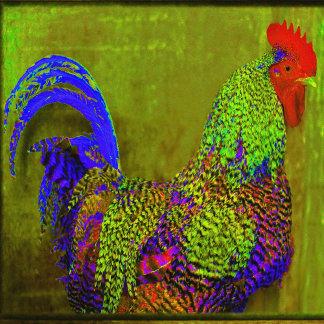 Rooster/Chicken Designs