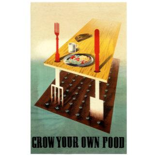 Grow your own food urban farming