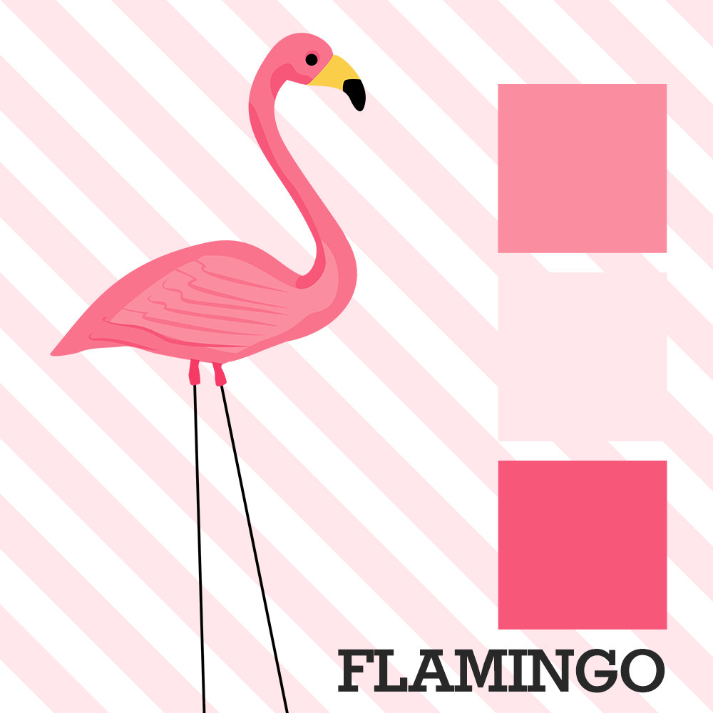 Flamingo Wedding
