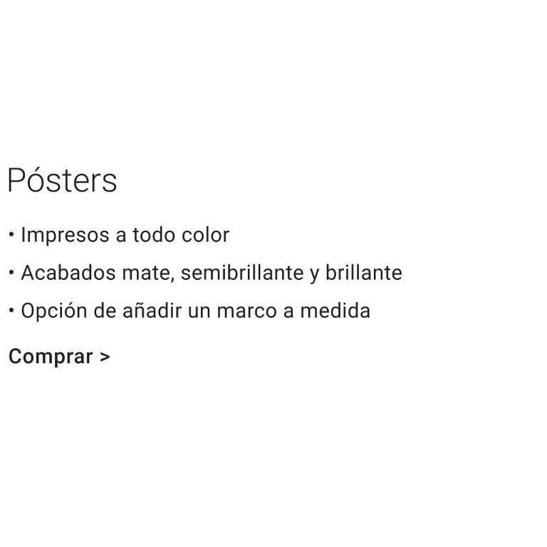 Características de los pósters