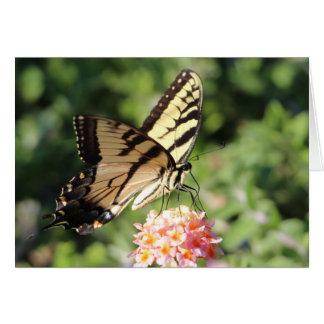 Swallowtail del este del tigre tarjeta de felicitación