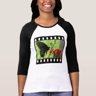 swallowtail del pipevine de la mariposa camiseta