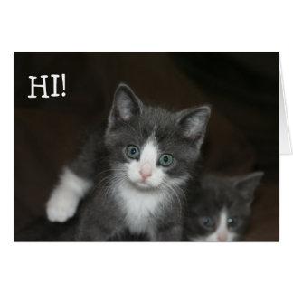 Sweet Kitties limpias a Happy Birthday! Tarjeta De Felicitación