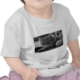T - a shirt bebés está cortado 6 meses yo le gusta