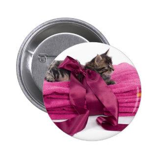 Tabby Kitten on pink towels