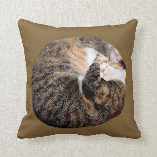 Tabby remendado el dormir cojín decorativo
